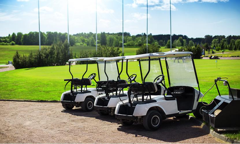 Características de los neumáticos de los coches de golf